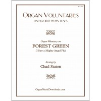 FOREST GREEN (I Saw a Mighty Angel Fly), Organ Voluntary on